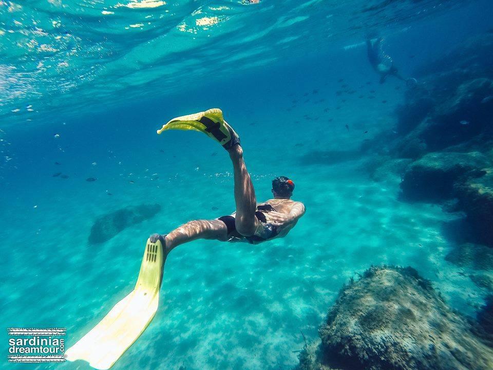 Immersione in Sardegna