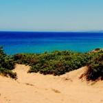 Pensando alla bella terra di Sardegna…