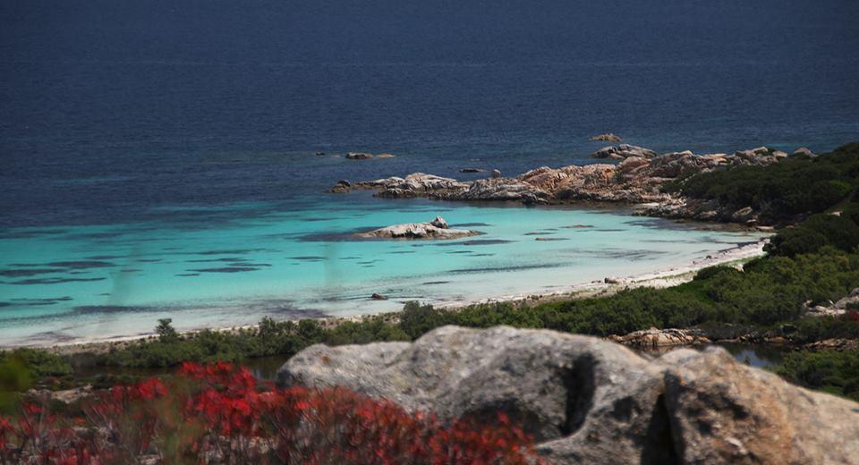 Cala Sant'Andrea, Asinara, Sardegna