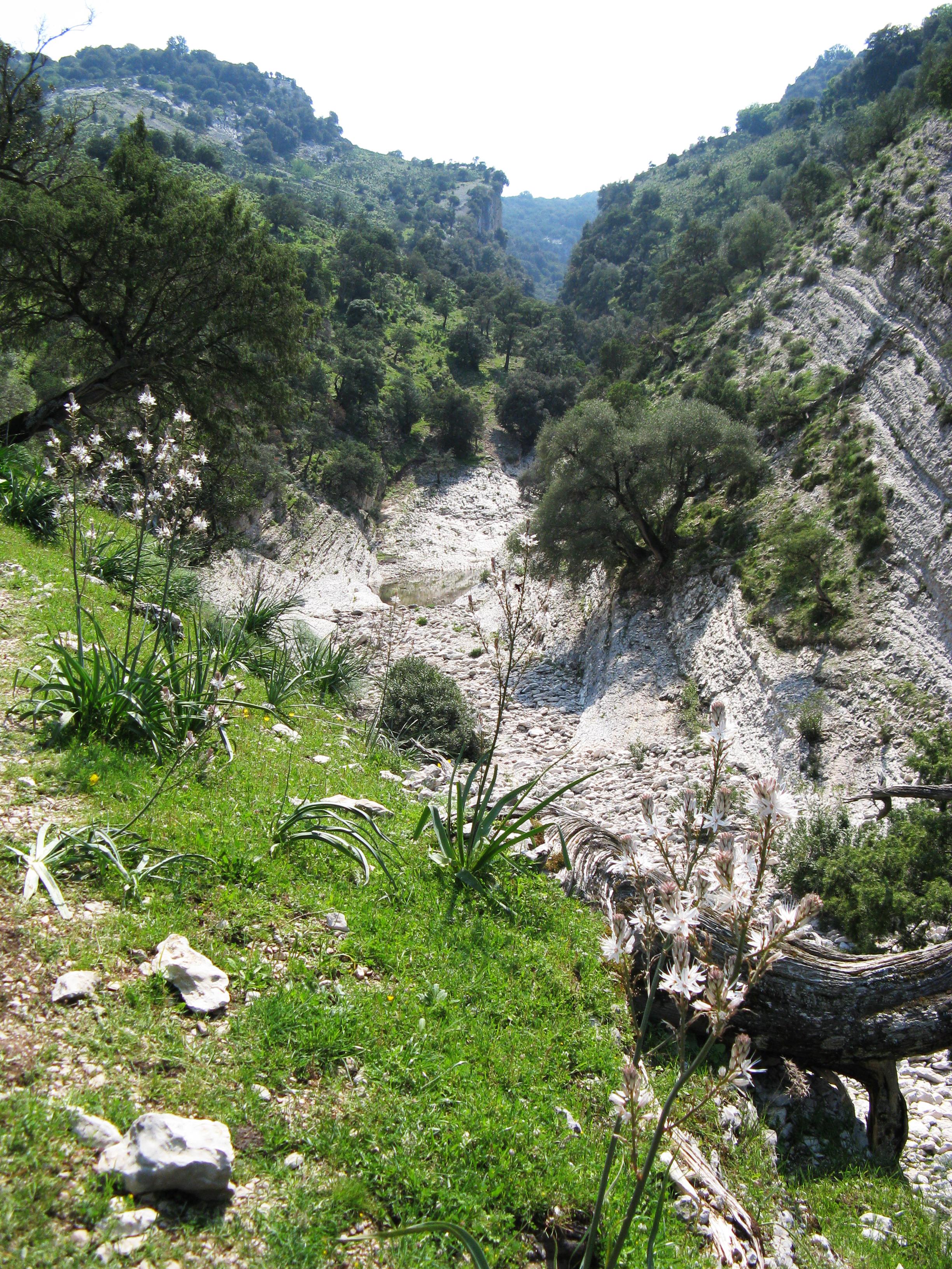 Trekking Ogliastra